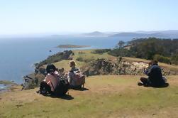 Excursión de día activo de la isla de Maria desde Hobart