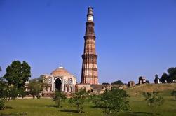 Tour Privado: Pasado y Presente de Delhi