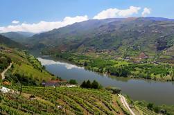 Excursão de dia inteiro: Douro Valley Trip from Porto