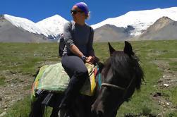 Excursión de 8 noches por el Tíbet y paseo a caballo