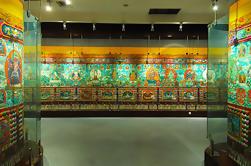 Museo de la Cultura de la Medicina Tibetana de 4 Horas con Senderismo desde Xining