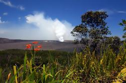 Experiencia de Hawaii Island