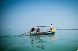 Delfínes Rosados de Khanom y Tour de Granja Orgánica
