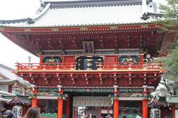 Recorrido histórico de Tokio con Chanko Almuerzo en un restaurante con temática de sumo