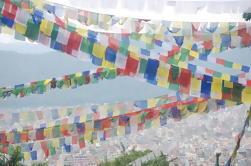 Excursão privada de dia inteiro do Vale de Katmandu Patrimônio Mundial da UNESCO