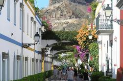 Mogan Street Market Tour en Gran Canaria con Traslados