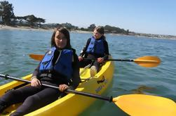 Santa Ponsa Kayak of Stand-Up Paddleboard Rental