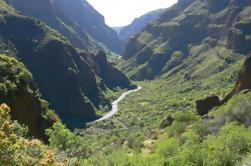 Trekking Tour Cañón de Guayadeque en Gran Canaria