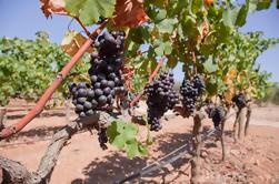 Begeleide Winery Tour in Mallorca