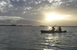 Excursión en kayak en la reserva de Sian Ka'an desde Tulum