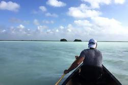 Tour combinado de kayak y snorkel desde Tulum