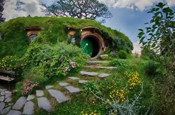 Excursión a las Cuevas Hobbiton y Ruakuri desde Auckland