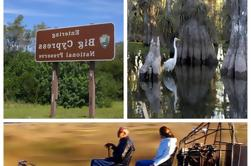 Miccosukee Airboat and Big Cypress National Preserve Adventure