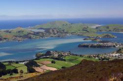 Tour de Patrimonio Sur de la Isla Sur de 6 Días desde Christchurch