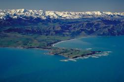 Excursión de 4 días a Akaroa y Kaikoura desde Christchurch