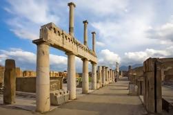 Viaje de medio día a Pompeya desde Nápoles