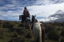 Aventura de 5 días en los Andes y Amazonas desde Quito