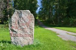 Excursión de medio día de historia vikingo desde Estocolmo