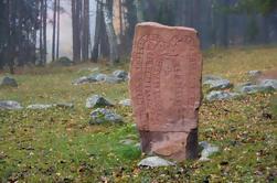 Excursión de un día a la historia de Vikings desde Estocolmo incluyendo Uppsala