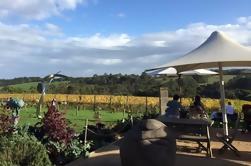 Excursión de un día a degustación de vinos y quesos en Mornington Peninsula desde Melbourne