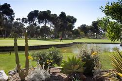 Shore Excursion: Golf Day in Malaga