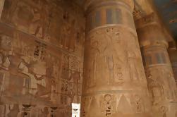 Private Day Tour: Leste e Oeste Bancos de Luxor