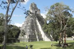 Tikal Maya Ruins Tour de día completo desde la ciudad de Guatemala