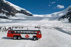 Columbia Icefield Tour incluyendo el Glacier Skywalk de Calgary