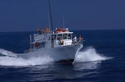 Kona Deporte-Pesca Grupo grande Carta privada - 6 horas