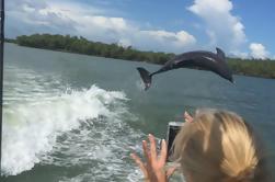 Observação de golfinhos e bombardeios Marco Island Eco-Tour