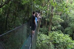 Tour de Puentes colgantes al 100% AventuraPark