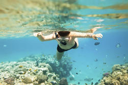 Na Pali Kauai Snorkel Expedición