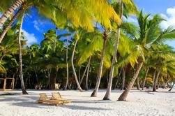 Excursão de um dia a Saona Island