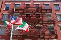Tour en pequeños grupos de los barrios de la ciudad de Nueva York