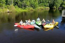 Excursión de kayak autoguiada de Amelia Island
