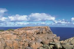 Excursión de 4 días desde Perth Incluyendo el Río Margaret, el Valle de los Gigantes Top Walk y Albany