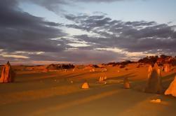 Pinnacles Desert, Nueva Norcia y Wildflowers Day Tour desde Perth