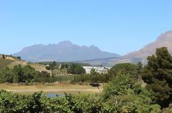 Pequeño grupo de cerveza y vino Tour en Paarl y Stellenbosch de Ciudad del Cabo