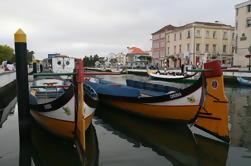 Ovar y Aveiro desde Porto