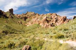 Auto-Drive Twilight Tour a través del desierto de Sonora