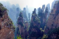 Excursión privada al Parque Nacional Zhangjiajie Incluyendo Almuerzo