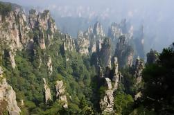 Excursión de un día en grupo al Parque Nacional Zhangjiajie con el Elevador Bailong, la Montaña Avatar y la Montaña Tianzi