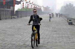 Excursión privada de un día a Xi'an y ciclismo incluido almuerzo