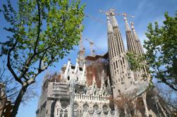 Barcellona Shore Excursion: meglio di Barcellona in piccoli gruppi Tour - Salta la fila alla Sagrada Familia