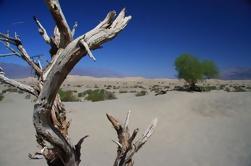 Viaje de un día desde el Valle de la Muerte desde Las Vegas