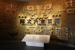 Xi'an Excursión cultural privada de medio día al Museo de Historia de Shaanxi y la Gran Pagoda del Ganso Salvaje