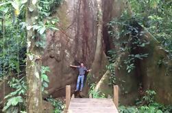 Parque de Aventura y Reserva de Bosques de Cinco Ceibas