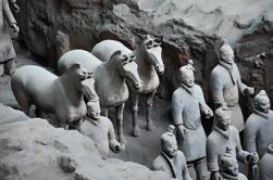Excursión Privada Personalizada a Día de los Guerreros y Caballos de Terracota de Xi'an con la Opción Excursión