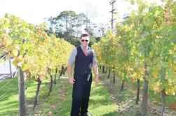 Tour privado de West Auckland Kumeu Wine Trail