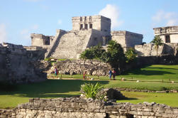 Ruinas de Coba, Cenote Choha, Tulum y Paradise Beach